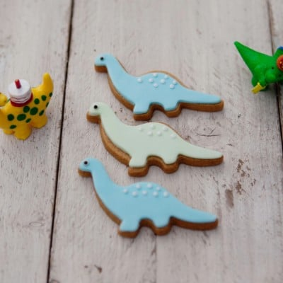 BISCUIT GIFTS FOR KIDS
