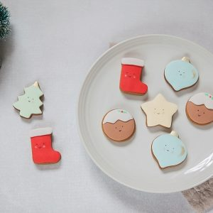 CHRISTMAS BISCUIT GIFT BOXES